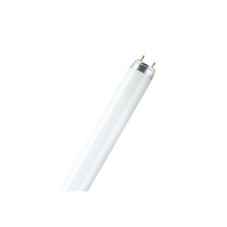 Osram лампа люминесцентная BASIC T8