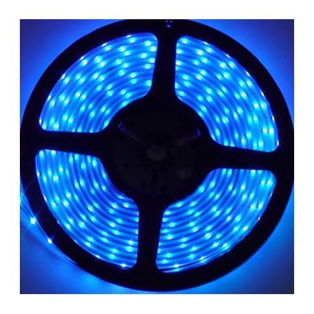 Navigator лента светодиодная NLS-3528B60-4.8-IP20-12V-Pro R5 синяя