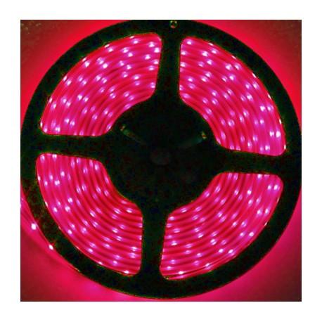 Navigator лента светодиодная NLS-3528R60-4.8-IP20-12V-Pro R5 красная