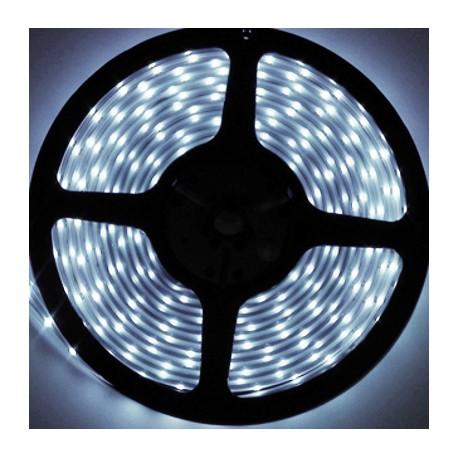 Navigator лента светодиодная NLS-3528CW60-4.8-IP20-12V R50 дневной белый