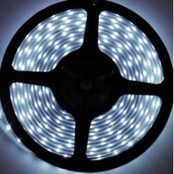 Navigator лента светодиодная NLS-3528W60-4.8-IP20-12V R5 холодный белый